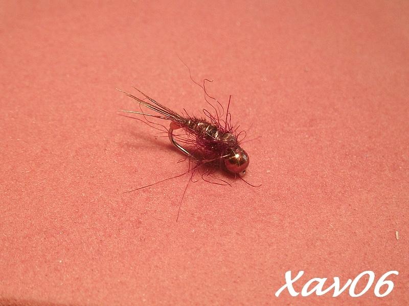 1- XAV06