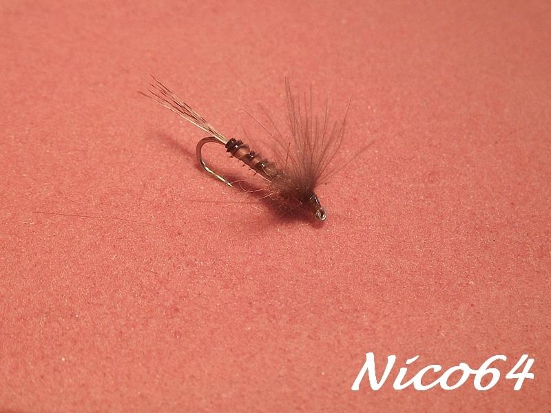 10-Nico64