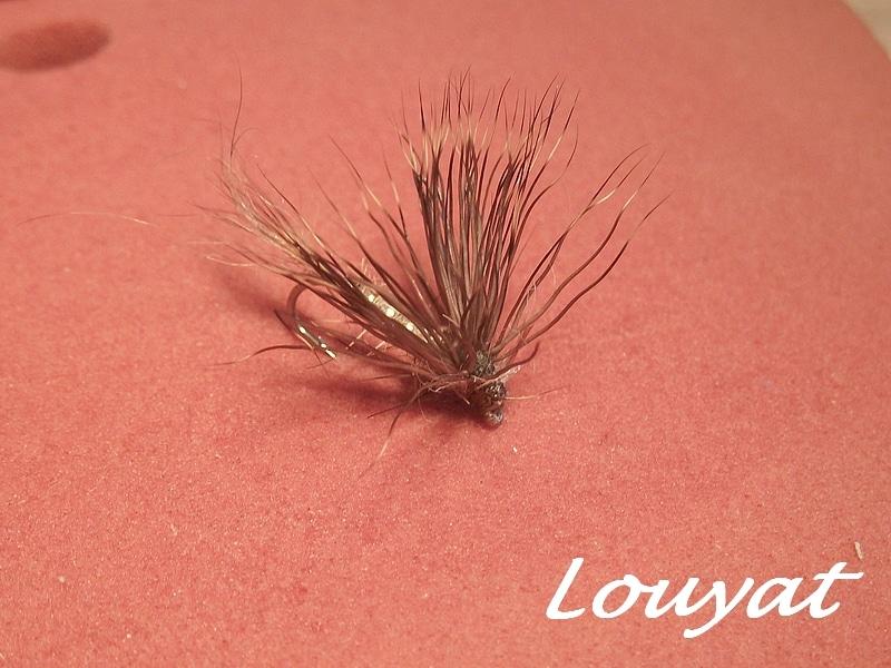 6- Louyat