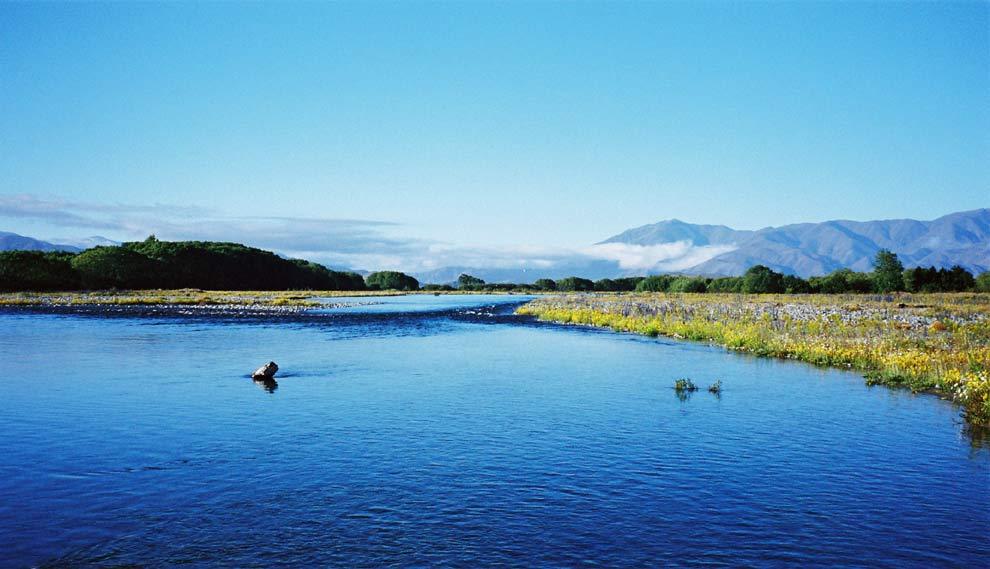 Tekapo-river