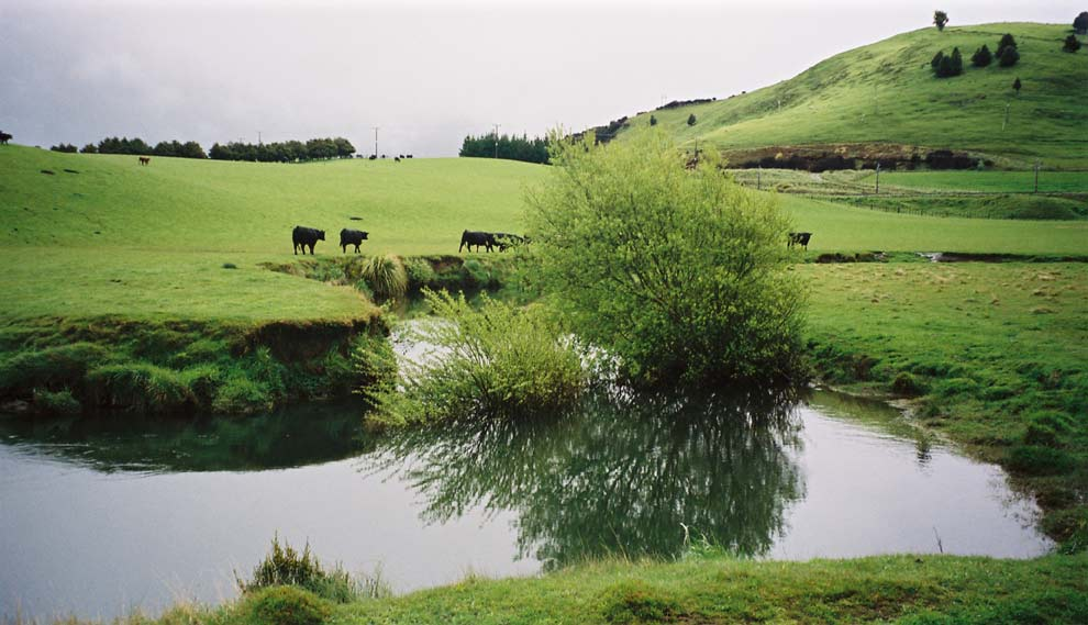 hautapu_river