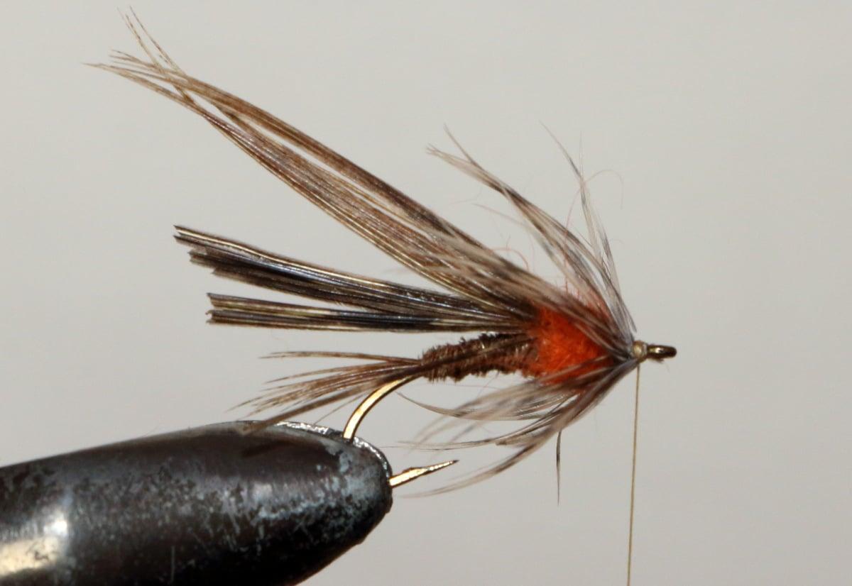 pheasant14