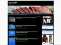 Thymdd57 un blog montage de mouche et autres